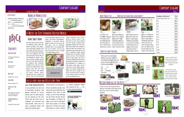 newsletter1-02-02